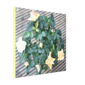 Yellow Rose Photo Canvas Print