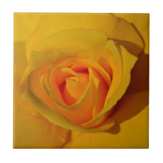 Yellow Rose Tile