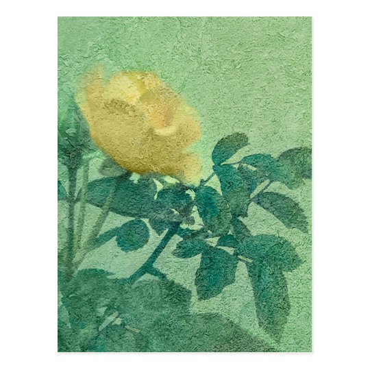 Yellow Rose Vintage Style Photo Postcard