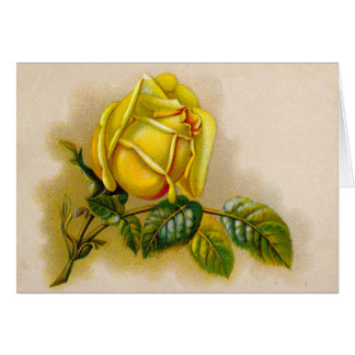 Yellow Rose Vintage Victorian Flower Card