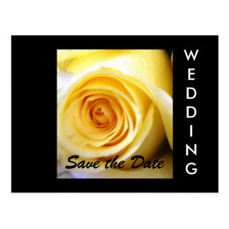 Yellow Rose Wedding Save the Date Postcard