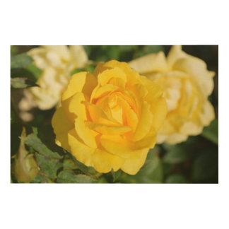 Yellow rose wood wall art