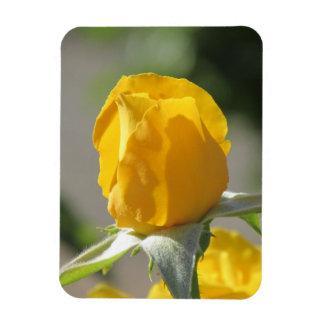 Yellow Rosebud Rectangular Magnet