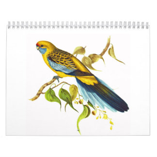 Yellow Rosella Calendar