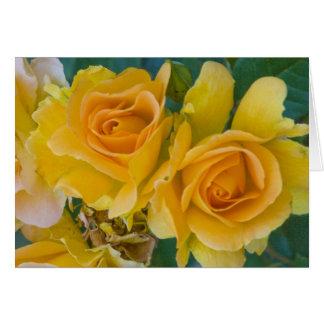 """Yellow Roses # 253"" Card"