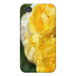 Yellow Roses for Mom iPhone spec cases Floral Case For The iPhone 4