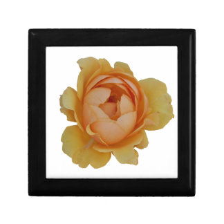 yellow roses in the garden gift box