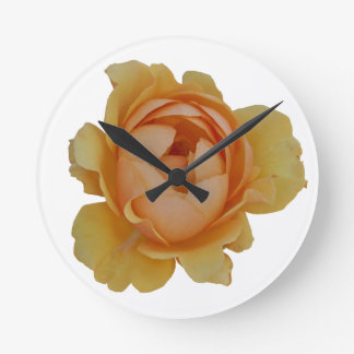 yellow roses in the garden round clock