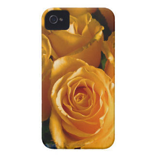 Yellow Roses iPhone 4 Case-Mate Cases