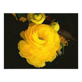 Yellow Roses Photography Photographic Print