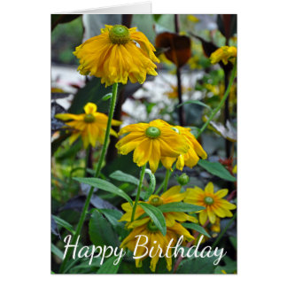 Yellow rudbeckia flowers card
