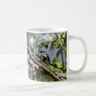 Yellow-rumped warbler in spring plumage coffee mug