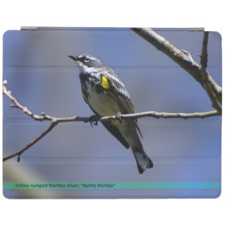 Yellow Rumped Warbler iPad Smart Cover iPad Cover
