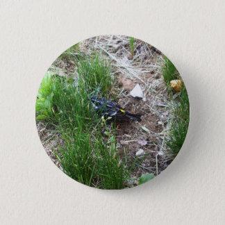 Yellow-Rumped Warbler-Myrtle Warbler 2 Inch Round Button