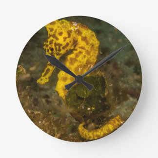 Yellow Seahorse Wall Clock