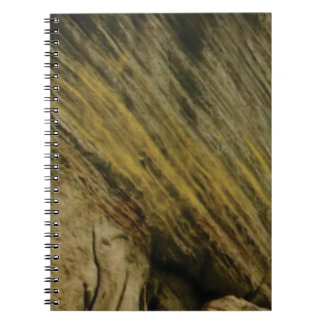 yellow slashes in the rock notebook