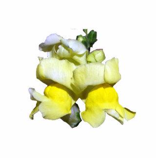 Yellow Snapdragon pin Photo Sculpture Button