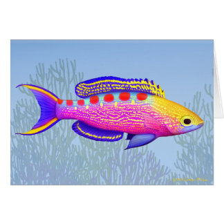 Yellow Spotted Anthias Reef Fish Card
