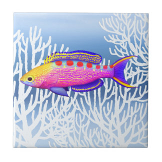 Yellow Spotted Anthias Reef Fish tile