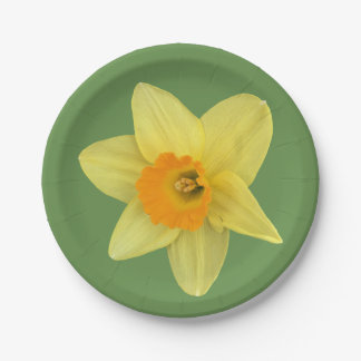 Yellow Spring Daffodil Paper Plate
