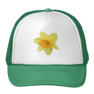 Yellow Spring Daffodil Trucker Hat