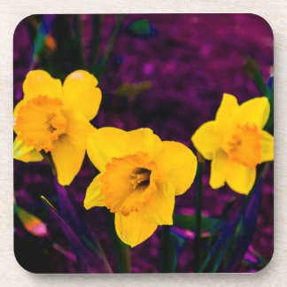 Yellow Spring Flowers Drink Coaster