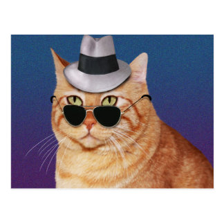 Yellow Striped Cat with Sunglasses and Hat Postcards