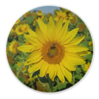 yellow sun flower summer blossom ceramic knob