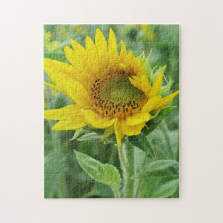 yellow sun flower summer blossom jigsaw puzzle