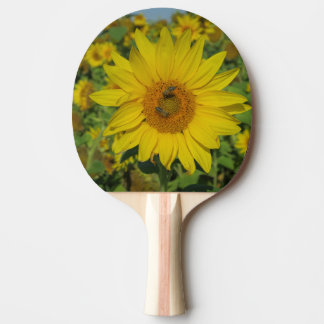 yellow sun flower summer blossom ping pong paddle