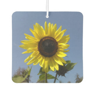 Yellow Sunflower And The Blue Sky Car Air Freshener