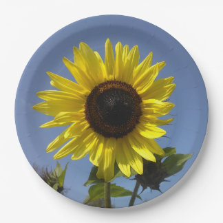 Yellow Sunflower And The Blue Sky Paper Plate