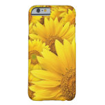 Yellow Sunflower iPhone 6 case