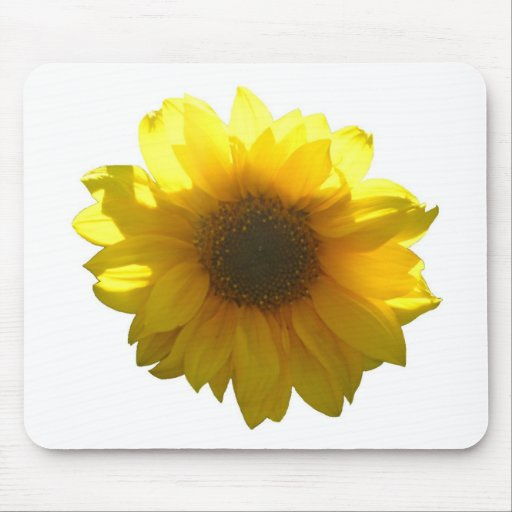 Yellow Sunflower Mouse Pads