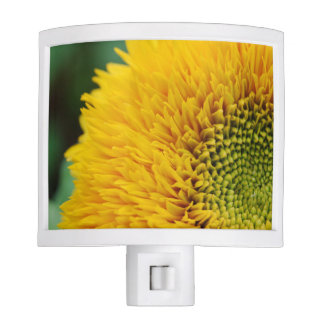 Yellow SunFlower Nite Lights