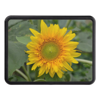 Yellow Sunflower Tow Hitch Covers