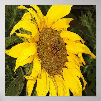 Yellow Sunflower Print