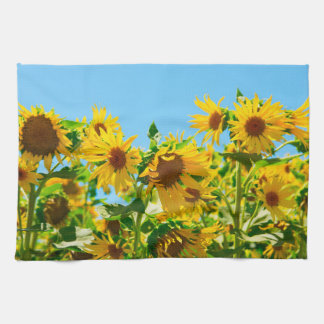 Yellow Sunflowers in a Field Kitchen Towel
