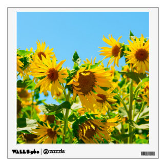 Yellow Sunflowers in a Field Wall Sticker