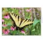 Yellow Swallowtail Butterfly in Summer Garden Card