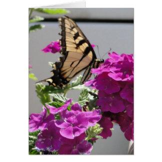 Yellow Swallowtail Butterfly & Purple Flowers Card