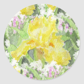 Yellow Tall Bearded Iris Watercolor Classic Round Sticker
