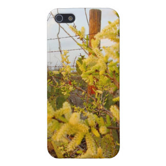 Yellow Texas Brush iPhone 5/5S Cases
