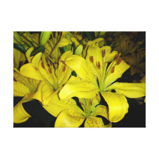 Yellow Tiger Lilies Canvas Print