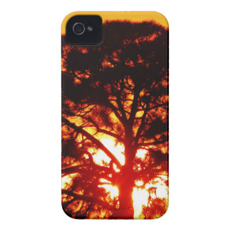 Yellow Tree iPhone 4 Cover