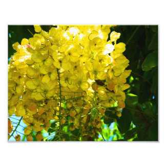 Yellow Tropical Flowers Poster