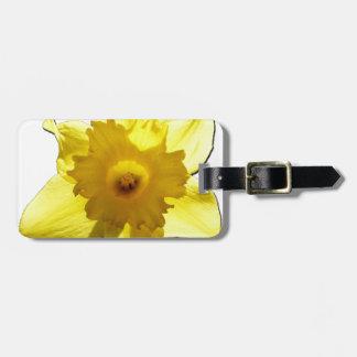Yellow Trumpet Daffodil 1.0 Bag Tag