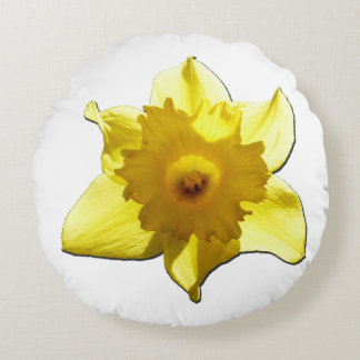 Yellow Trumpet Daffodil 1.0 Round Pillow