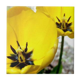 Yellow Tulip Ceramic Photo Tile