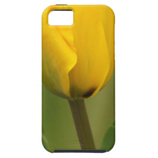 Yellow Tulip iPhone 5 Covers